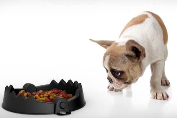 рацион питания для похудения при тренировках